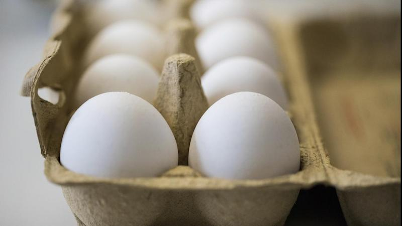 17 countries affected by toxic egg scandal