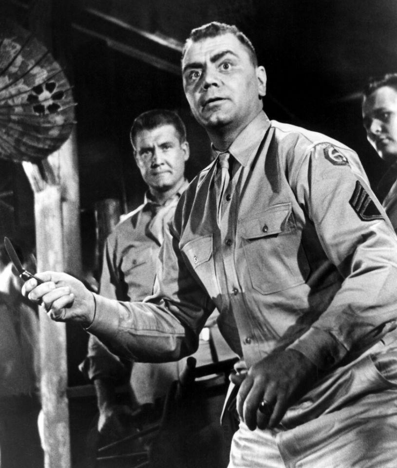 <p>The veteran actor, an Oscar-winner for 1955's 'Marty,' was also a Navy vet who re-enlisted soon after Pearl Harbor. He spent the war patrolling the Atlantic on an anti-submarine ship, and would later keep up the association by starring in popular TV show 'McHale's Navy.' </p>