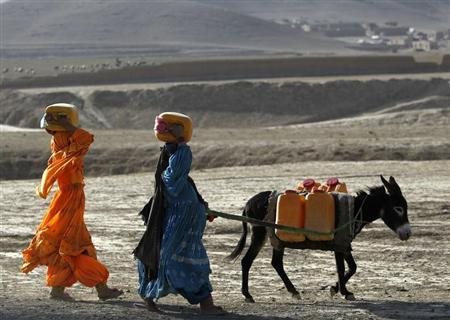 Afghan kochi nomad women carry water containers on their heads as they walk with a donkey outside of Maidan Shar