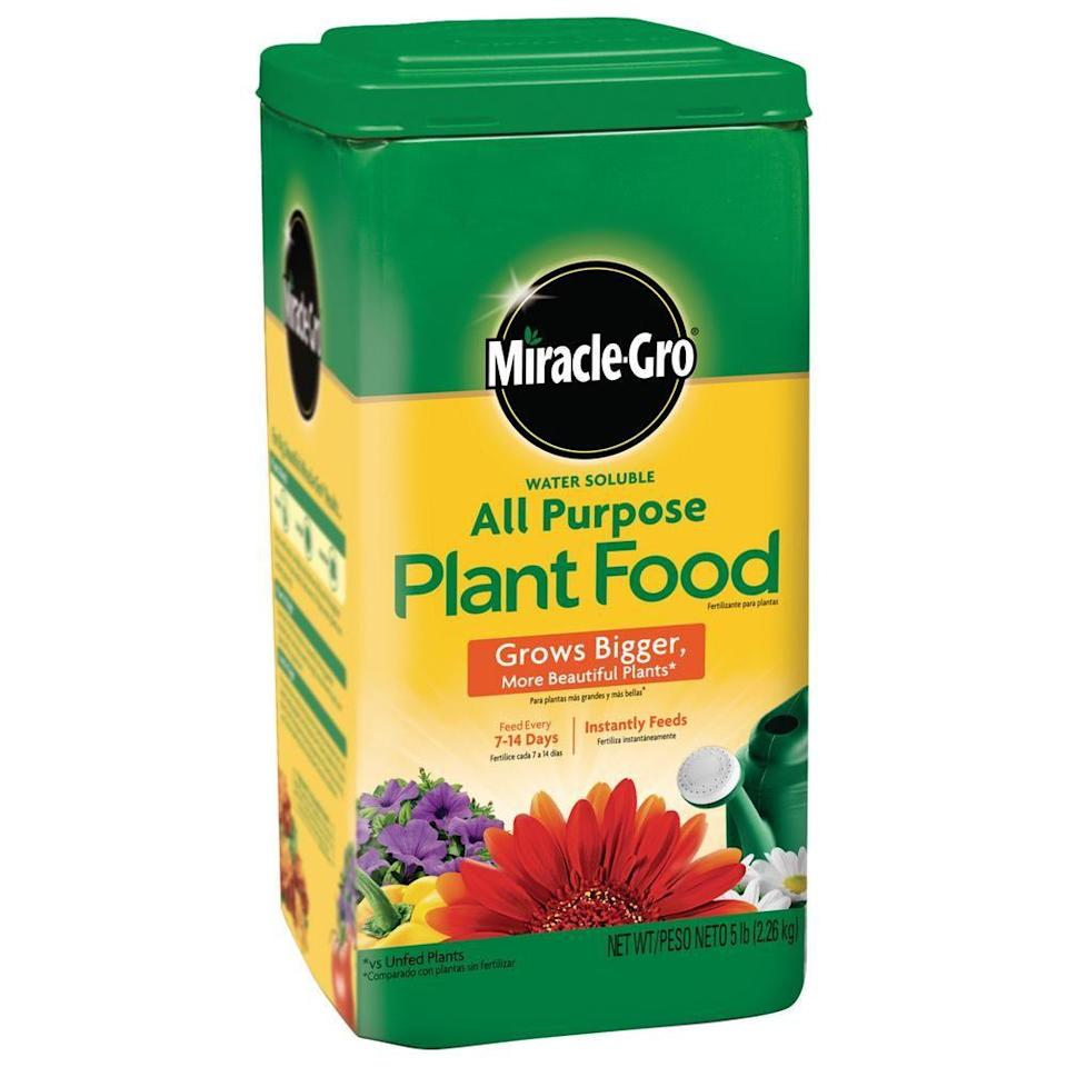 """<p><strong>Miracle-Gro</strong></p><p>homedepot.com</p><p><strong>$16.83</strong></p><p><a href=""""https://go.redirectingat.com?id=74968X1596630&url=https%3A%2F%2Fwww.homedepot.com%2Fp%2FMiracle-Gro-Water-Soluble-5-lb-All-Purpose-Plant-Food-1001232%2F100035250&sref=https%3A%2F%2Fwww.housebeautiful.com%2Flifestyle%2Fg36036673%2Fgrow-a-spring-garden%2F"""" rel=""""nofollow noopener"""" target=""""_blank"""" data-ylk=""""slk:Shop Now"""" class=""""link rapid-noclick-resp"""">Shop Now</a></p><p>Water is definitely your garden's best friend, but sometimes your plants need a little extra TLC. Miracle-Gro has a wide line of plant food products for use on vegetables, shrubs and plants. You'll only need to use it every week or two to see big results in your garden's growth.</p>"""