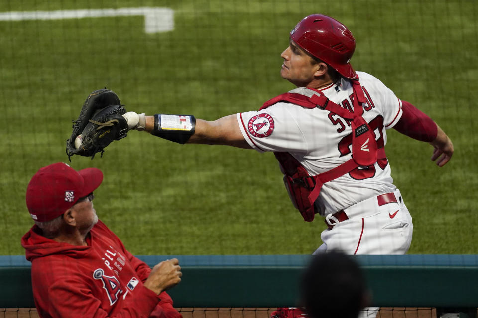 Los Angeles Angels catcher Max Stassi (33) catches a foul ball hit by Kansas City Royals first baseman Carlos Santana (41) during the fourth inning of a baseball game Wednesday, June 9, 2021, in Los Angeles, Calif. Los Angeles Angels manager Joe Maddon is at left. (AP Photo/Ashley Landis)