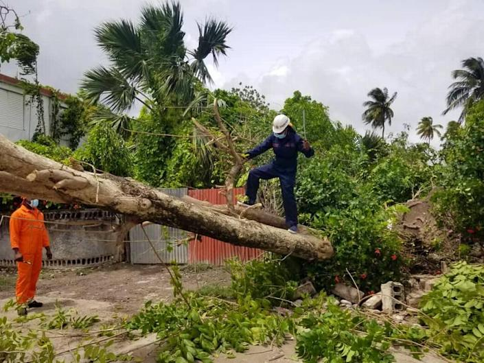 In the aftermath of Tropical Storm Elsa, workers with the Office of Civil Protection intervened in the southwestern city of Les Cayes Sunday to clear streets of fallen trees and restore traffic.