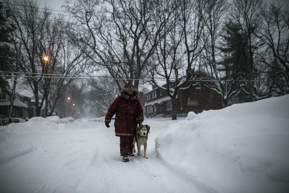 A woman walks her dog during a blizzard in Montreal, Canada/Getty Images