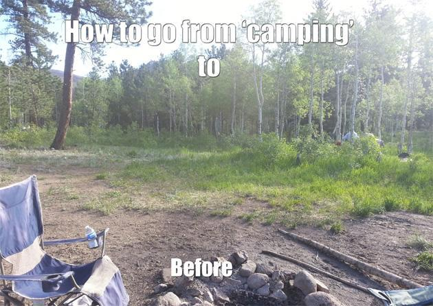 Watching Stanley Cup Final while camping in a national forest is awesome (Photo)