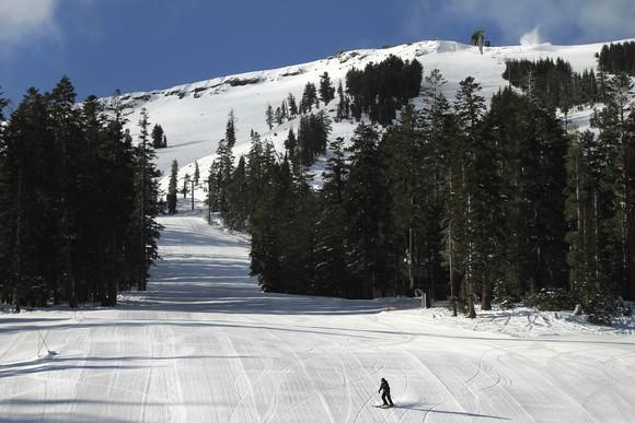 Lone skier on a slope with trees and a view of the top of the mountain.
