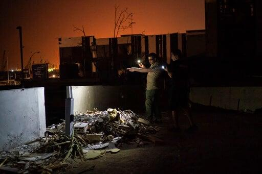 Volunteers rescue pets, search for lost ones in Beirut blast
