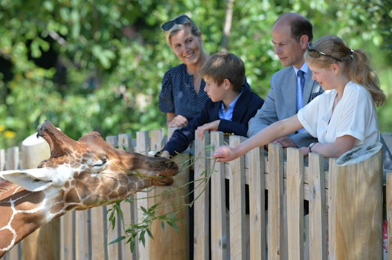 The Earl and Countess of Wessex, with their children, Lady Louise and James, Viscount Severn feeding a giraffe during a visit to Bear Wood at Wild Place Project in Bristol.