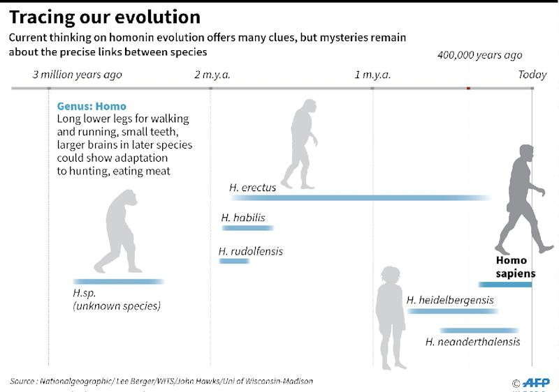 Tracing our evolution