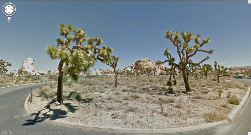 In this undated Street View image provided by Google is Joshua Tree National Park in California. The Google Street View service that has brought us Earth as we might not be able to afford to see it, as well criticism that some scenes along its 5 million miles of the globe's roadways invade privacy, this month has turned its 360-degree cameras on road trips through five national parks in California. (AP Photo/Google)