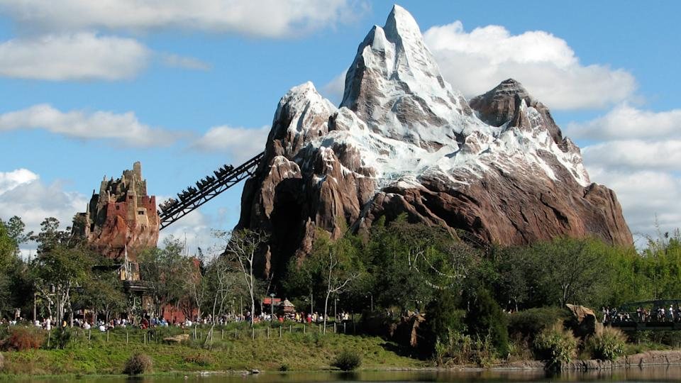 Expedition Everest ? Legend of the Forbidden Mountain is a steel roller coaster built by Vekoma at Disney's Animal Kingdom theme park at the Walt Disney World theme park
