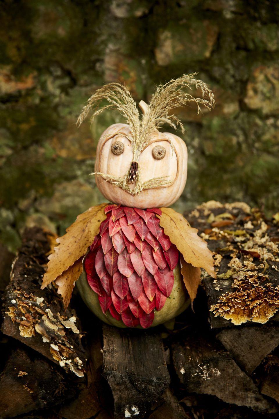 <p>This sweet face just requires a trip to the backyard to gather a few leaves and pine cones. <br><br><strong>To make:</strong> Gather small- and medium-sized leaves, acorn caps, grasses, and pinecones from the yard. Glue small leaves on the front of a small oblong pumpkin, overlapping them slightly, to create feathers. Glue four larger leaves on either side, overlapping them, to create wings. Attach a piece of thin leather string with hot glue to a small acorn squash to create the outline of the face. Pull apart a pinecone and use the individual scales to create the nose, attaching them with hot glue. Attach acorn caps to create eyes and grass to create ears and whiskers.</p>