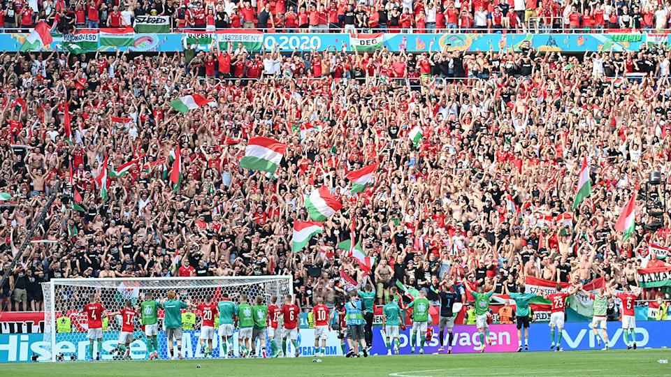 Hungary's players, pictured here celebrating with fans after their 1-1 draw with France.