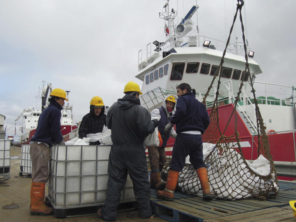 In this March 14, 2013 photo, workers offload fish from a fishing ship in Port Stanley, Falklands Islands. Fish are suffering from the fight between Argentina and the Falkland Islands. Scientists say the western South Atlantic Ocean claimed by both governments is the only place in the world where scientists don't jointly manage their shared seas. As a result, unlicensed boats are able to scoop up vast quantities of squid and other species. (AP Photo/Paul Byrne)
