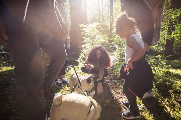 You can prevent ticks from latching by wearing proper clothing when you're outdoors and by inspecting your animals after being outside. (Photo: Noel Hendrickson via Getty Images)