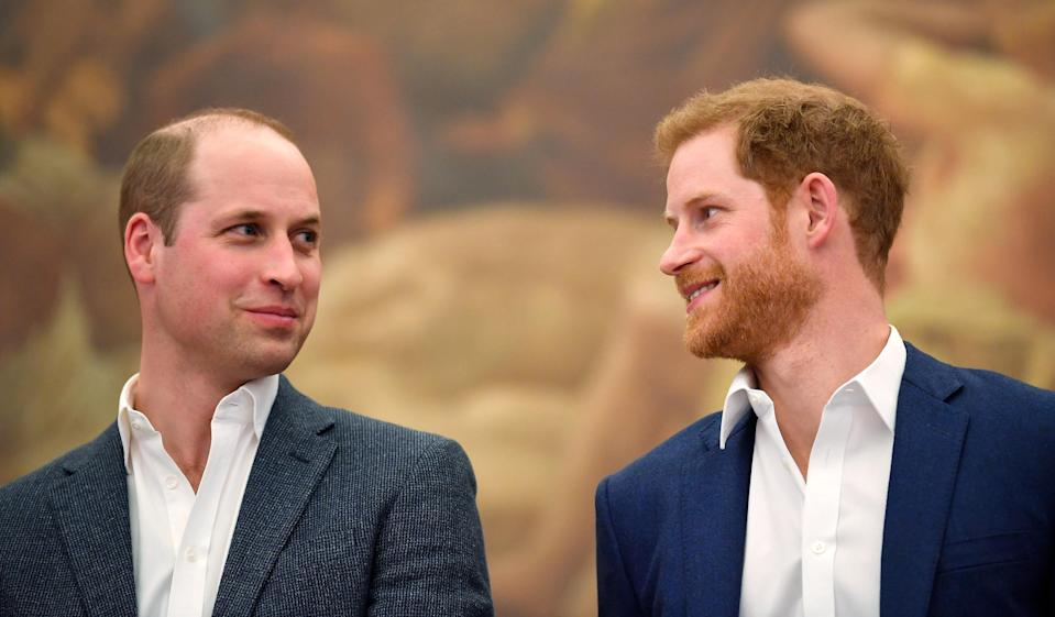 <p>Brothers William and Harry attend the opening of the Greenhouse Sports Centre in April (Getty) </p>