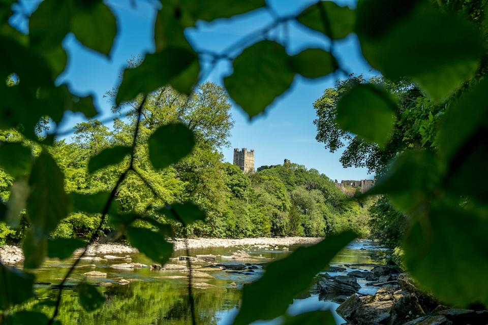 Richmond Castle seen while clambering through Billy Bank WoodPeter Watson