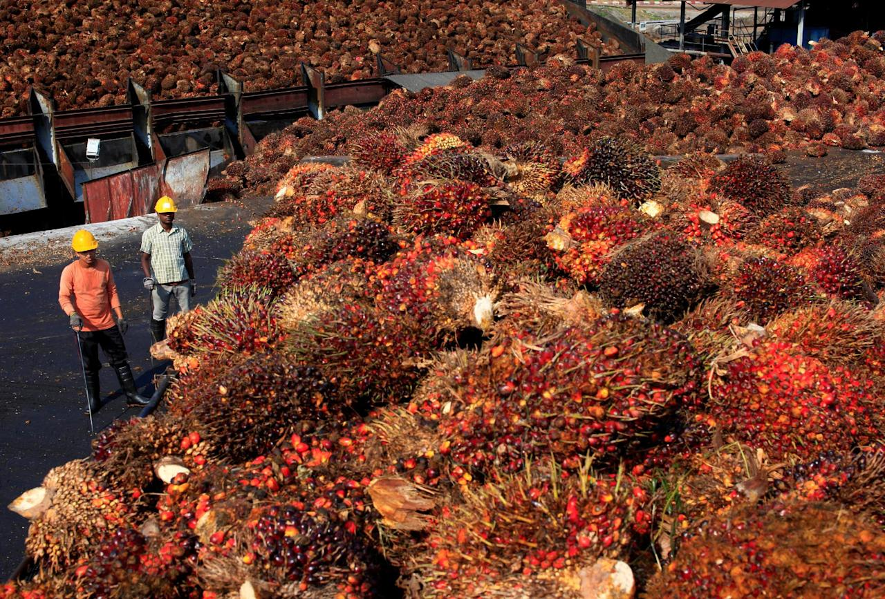 Workers stand near palm oil fruits inside a palm oil factory in Sepang, outside Kuala Lumpur, February 18, 2014. REUTERS/Samsul Said/File Photo