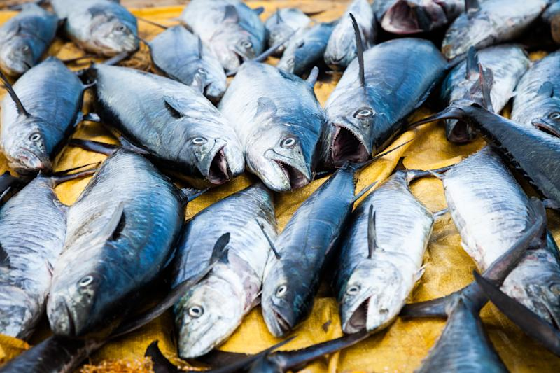 Diversity is the key to sustainable fishing