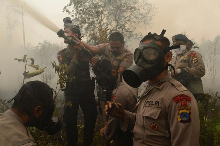 Indonesian firefighters and police extinguish a fire on burning peatland on Borneo island on September 24, 2015