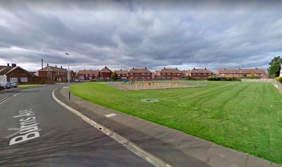 <em>The dog attacked children playing in a park in Burns Avenue in Northumberland (Google)</em>