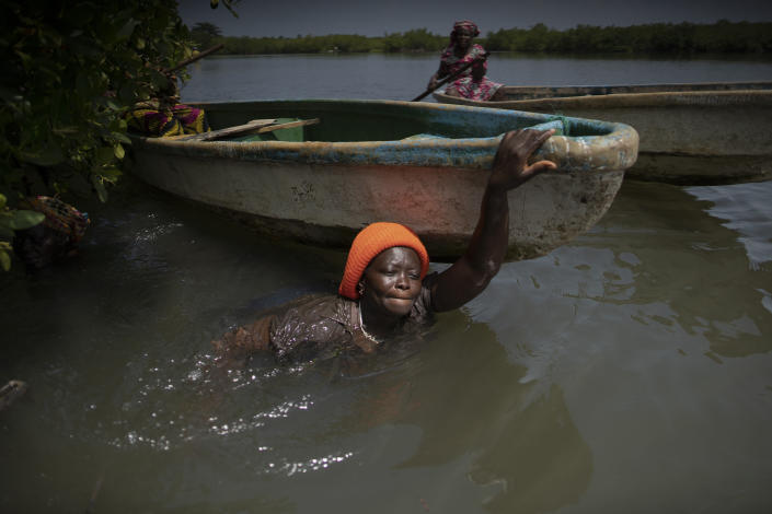 Rose Jatta pulls her boat into the estuary waters as she looks for fish traps she had set up earlier in the mangrove of the Gambia river in Serrekunda, Gambia, Saturday, Sept. 25, 2021. As health officials in Gambia and across Africa urge women to be vaccinated, they've confronted hesitancy among those of childbearing age. Although data on gender breakdown of vaccine distribution are lacking globally, experts see a growing number of women in Africa's poorest countries consistently missing out on vaccines. Jatta fears the vaccine against COVID-19 could make her ill, leaving her two children without food on the dinner table. (AP Photo/Leo Correa)