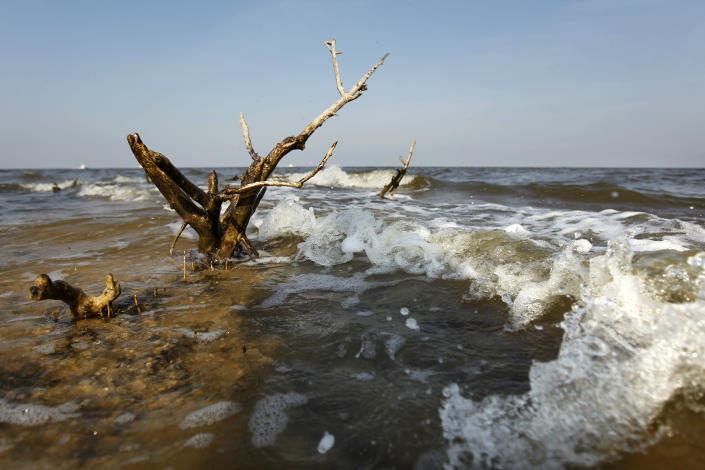 The last remnant of of formerly small island near Cat Island is seen as it is eroded by the surf in Barataria Bay in Plaquemines Parish, La., Wednesday, April 11, 2012. (AP Photo/Gerald Herbert)