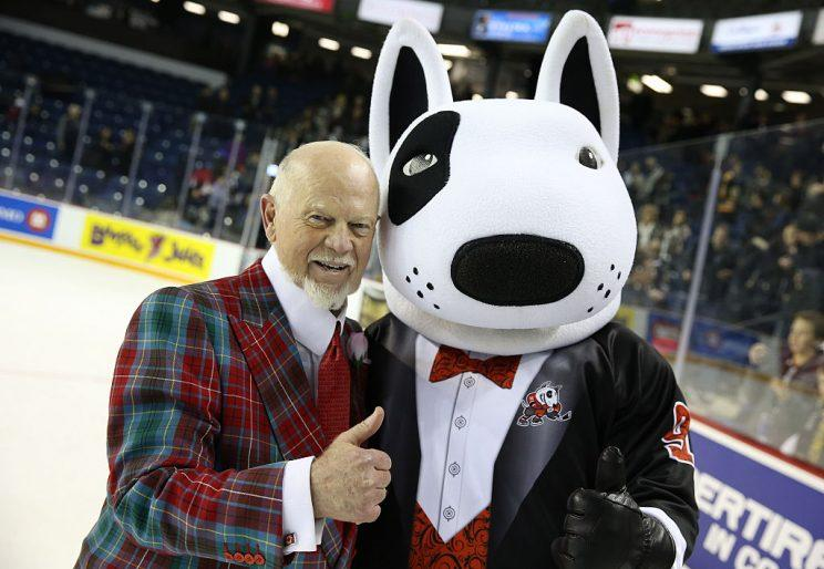 Whaddaya think? Don Cherry to the NFL? (Getty)