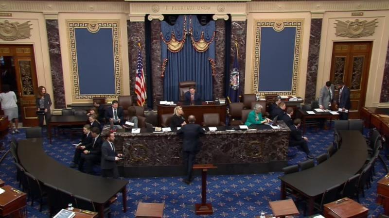 A still image taken from a webcast provided by the United States Senate shows the regular session of the Senate at the US Capitol in Washington, DC, USA, 05 February 2020. EFE/US SENATE TV