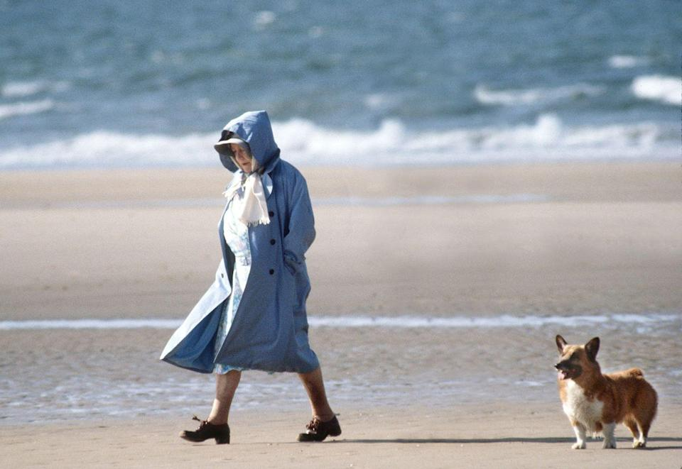 <p>Like mother like daughter: The Queen mother is seen walking with her corgi on the beach in Norfolk.</p>