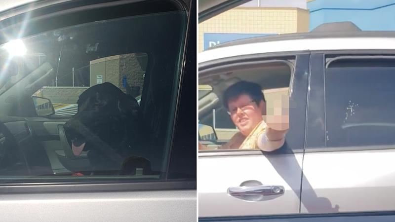 Sintich Kat confronts a dog owners for leaving her dog in a car on a hot day