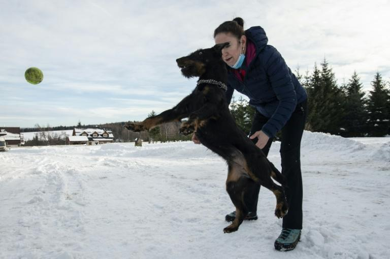 Lenka Vlachova, a trainer who works at Prague's fire brigade, plays with jagdterrier Laky in front of the training centre for Covid-19 sniffing dogs