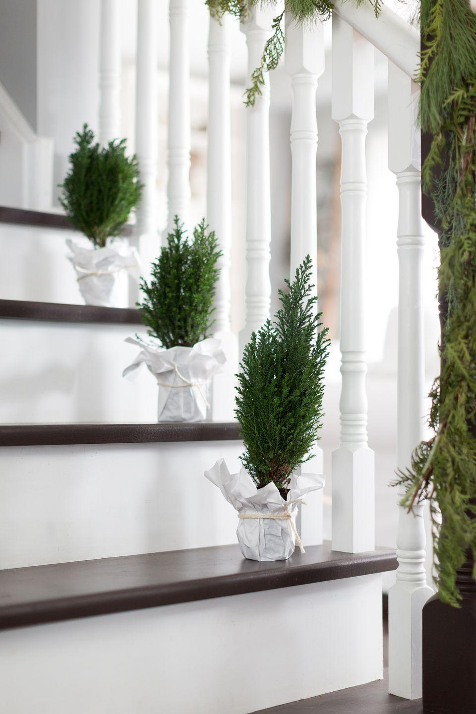 """<p>For a sweet surprise when you round the corner to climb the stairs, add small potted plants to each tread. If you don't want to worry about watering, opt for fake trees. </p><p><em>See more at <a href=""""https://www.craftberrybush.com/2016/11/christmas-house-tour-2016.html"""" rel=""""nofollow noopener"""" target=""""_blank"""" data-ylk=""""slk:Craftberry Bush"""" class=""""link rapid-noclick-resp"""">Craftberry Bush</a>.</em></p>"""