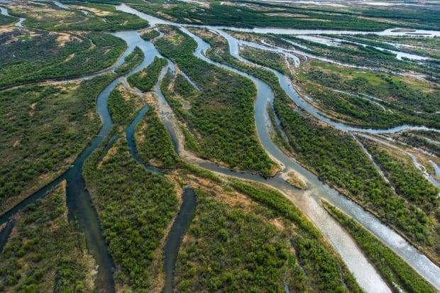 The Saskatchewan River Delta was highlighted as a key part of survival for those of the Cumberland House Cree Nation on Thursday. (Garth Lenz - image credit)