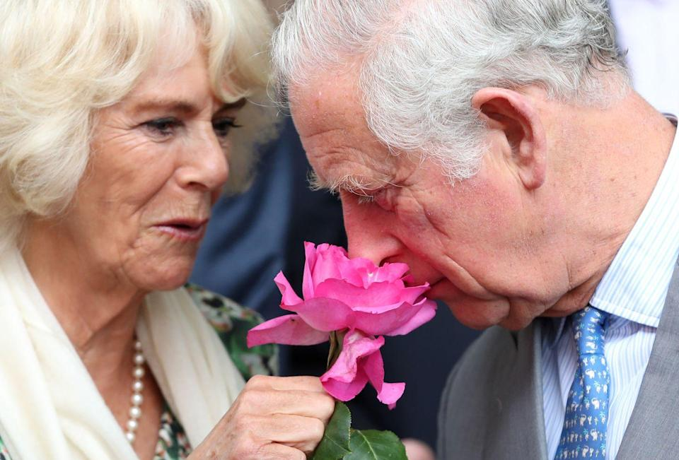 <p>Prince Charles literally stops to smell the roses during a trip to a flower market in Nice, France. </p>