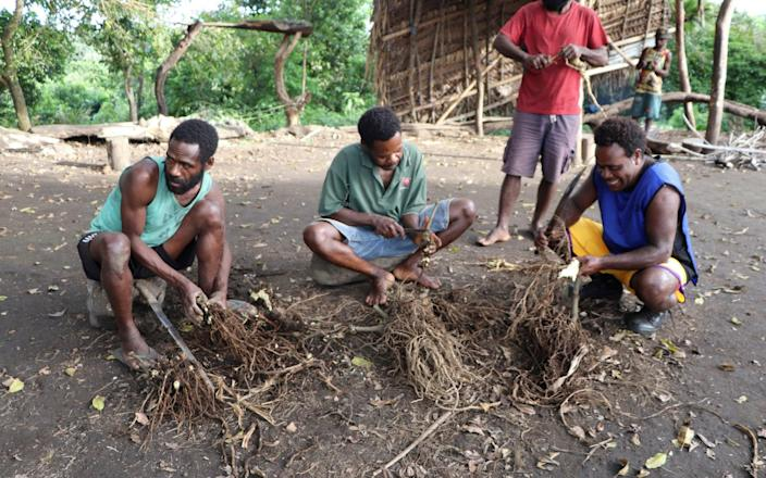 Islanders prepare the roots of the pepper tree to make the narcotic drink kava for the funerary ceremony - Jean-Pascal Wahe/Reuters