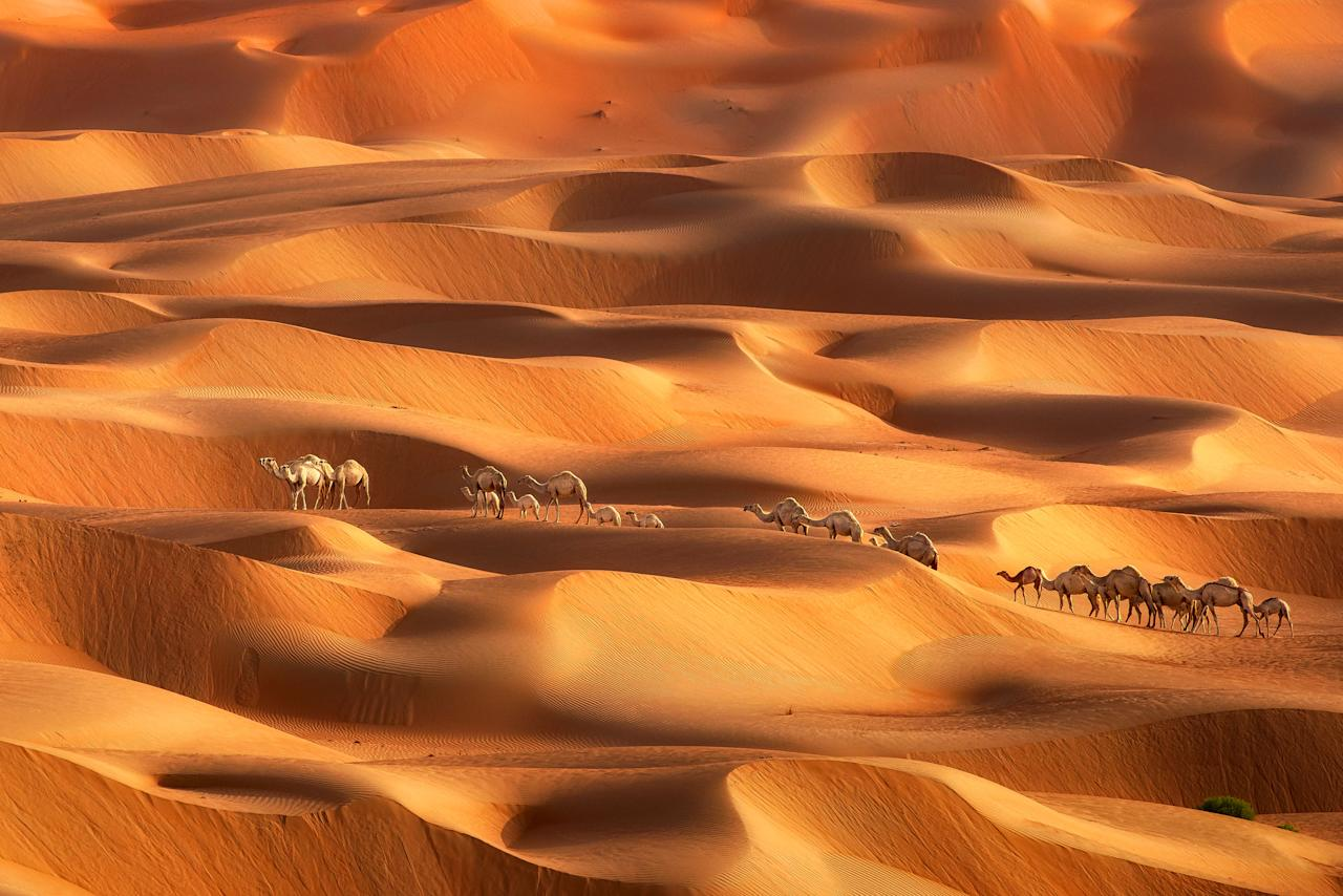 <p>These stunning vistas show off a sea of sand. (Photo: Anushka Eranga/Caters News) </p>