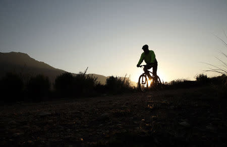 A mountain biker follows a trail in the Jonkershoek valley near Stellenbosch in the Cape Winelands, July 30, 2014. REUTERS/Mike Hutchings