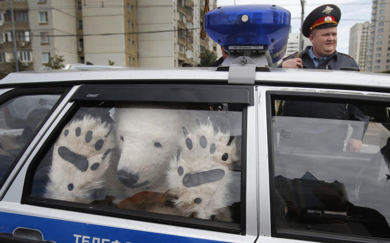 A Greenpeace activist, dressed as a polar bear, sits inside a police car after being detained outside Gazprom's headquarters in Moscow, Russia, Wednesday, Sept. 5, 2012. Russian and international environmentalists are protesting against Gazprom's plans to pioneer oil drilling in the Arctic. (AP Photo/Misha Japaridze)