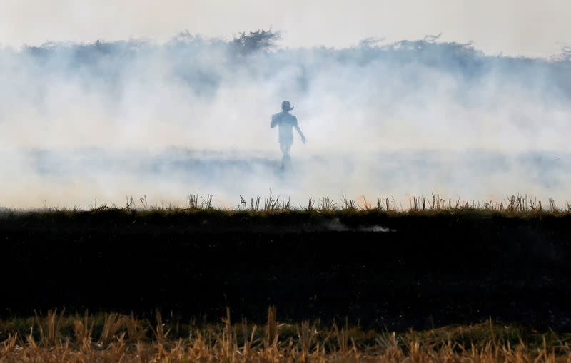 FILE PHOTO: A farmer burns paddy waste stubble in a field on the outskirts of Ahmedabad
