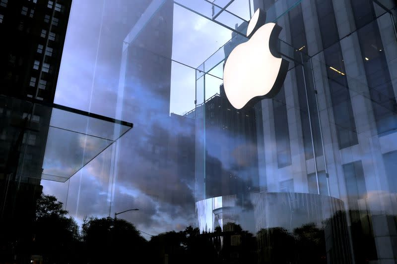 FILE PHOTO: The Apple Inc. logo is seen hanging at the entrance to the Apple store on 5th Avenue in New York
