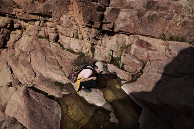 In this March 29, 2019 photo, an Egyptian 21-year-old student on a trek looks at water remaining after a rainfall, in the mountains near Wadi Sahw, Abu Zenima, in South Sinai, Egypt. Four Bedouin women are for the first time leading tours in Egypt's Sinai Peninsula, breaking new ground in their deeply conservative community, where women almost never work outside the home or interact with outsiders. (AP Photo/Nariman El-Mofty)