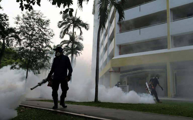 15 more cases of locally transmitted Zika infection confirmed in Singapore: MOH