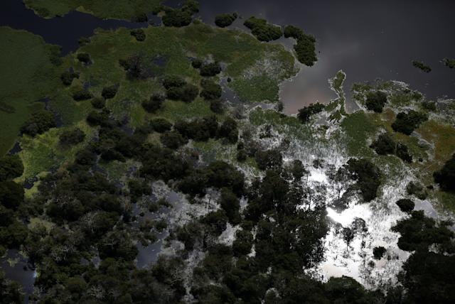 <p>The Mamiraua Sustainable Development Reserve is seen in Uarini, Amazonas state, Brazil, May 16, 2016. (Photo: Bruno Kelly/Reuters) </p>