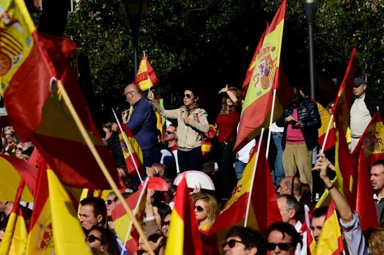 In Madrid, thousands joined a rally in support of Spain's territorial unity called by the far-right Vox party (AFP Photo/OSCAR DEL POZO )