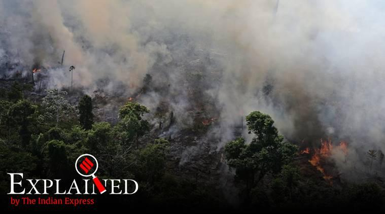 Amazon forest fire, amazon fire, Brazil president on Amazon fires, Fires in the Amazon, Amazon rainforest fires, amazon fire photos,