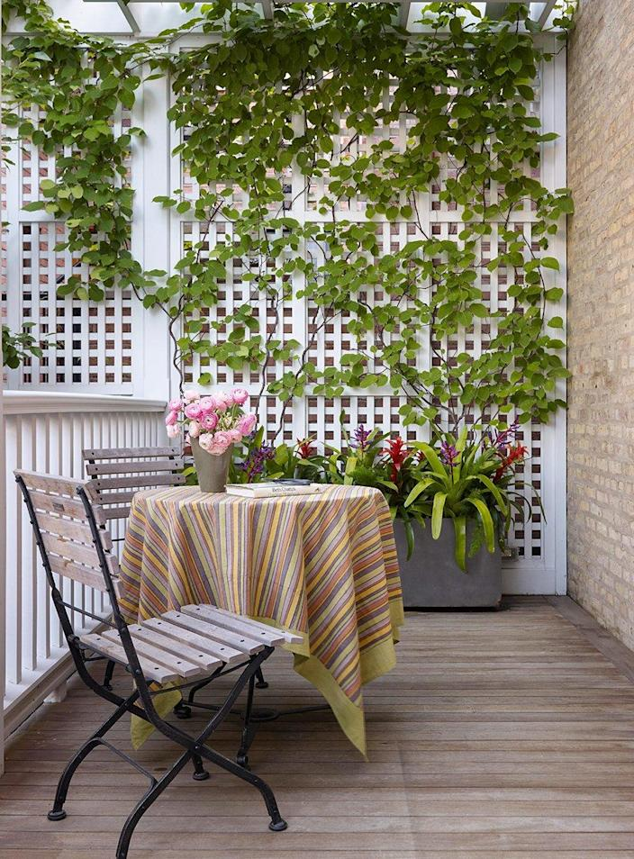 A simple white privacy trellis allows ample greenery to grow up its length while providing people in the yard with beautiful natural covering.