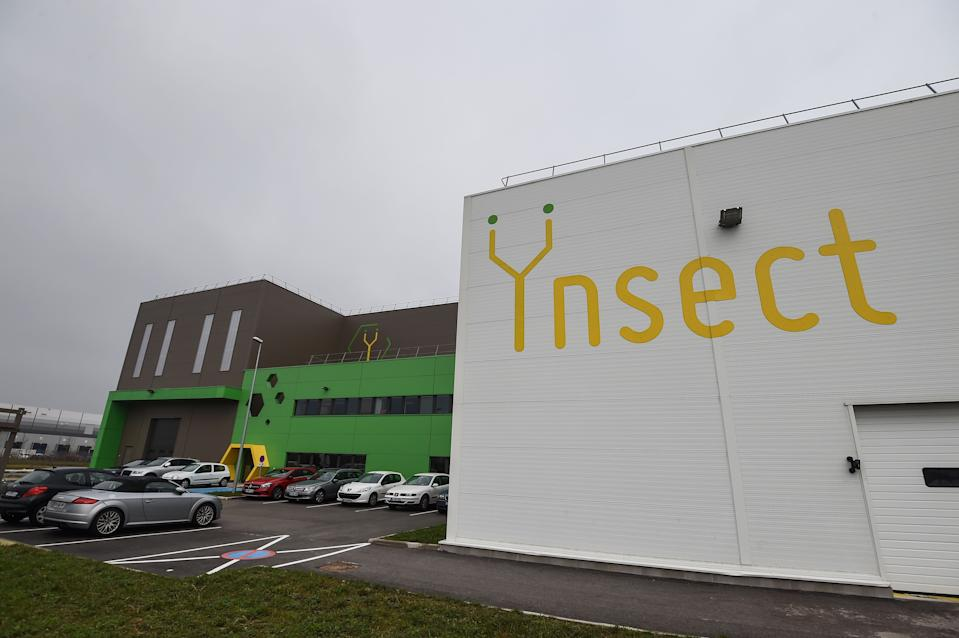 Ynsect plans to use the raised capital to breed mealworms that produce proteins for livestock, pet food and fertilisers. Photo: Sebastien Bozon/AFP via Getty Images