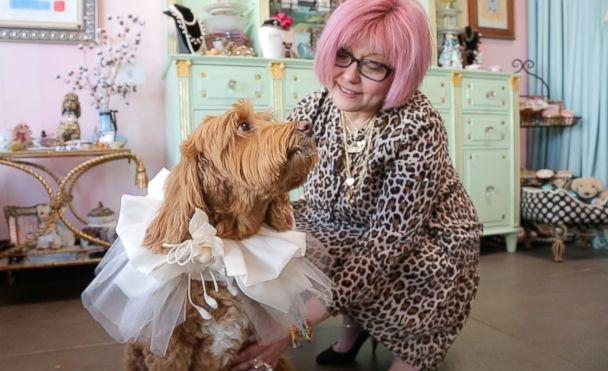 PHOTO: Costume designer Yana Syrkin created this fabric collar for a dog to wear at a wedding. (Olivia Smith/ABC News)