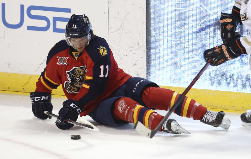 Florida Panthers' Jonathan Huberdeau steals the puck from an Anaheim Ducks player during the second period of an NHL hockey game in Sunrise, Fla., Tuesday, Nov. 12, 2013. (AP Photo/J Pat Carter)