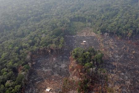 FILE PHOTO: An aerial view of a deforested plot of the Amazon near Humaita